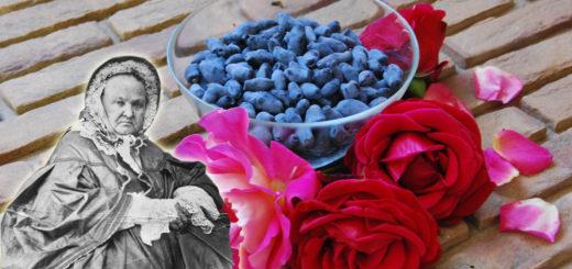 Варенье из жимолости и розы
